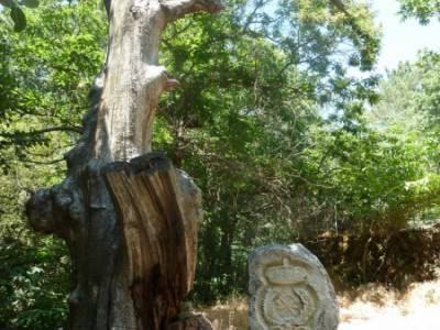 Pinares de Piedralaves;macizo galaico leones gr 86 charca verde la pedriza